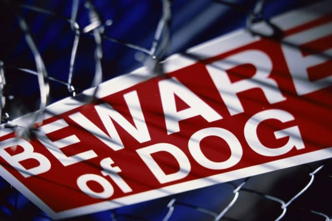 Close-up of a beware of dog sign on a chain-link fence